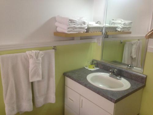 A bathroom at Gîte au Pignon Vert Ste-Foy