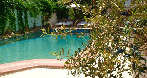 Hotel Pighi游泳池或附近泳池