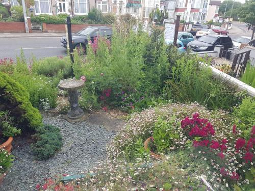 A garden outside Brookfield Guesthouse