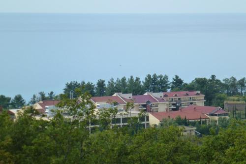 House by the sea с высоты птичьего полета