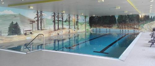 The swimming pool at or near Sunotel Kreuzeck