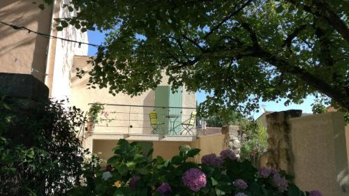 A garden outside Berne &Michel