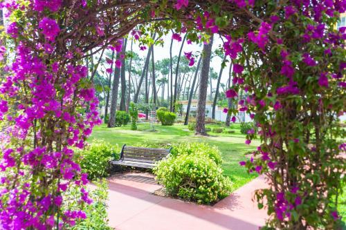 Патио или другая зона на открытом воздухе в AluaSun Marbella Park