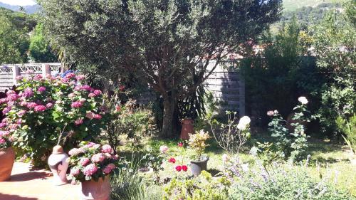 A garden outside La Chambre De Salome
