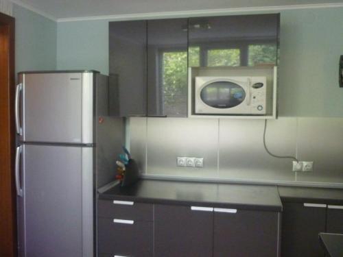 Кухня или мини-кухня в Domik na Limane