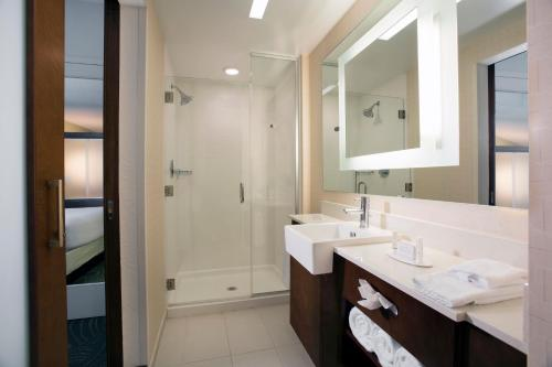 A bathroom at SpringHill Suites by Marriott Orlando at FLAMINGO CROSSINGS Town Center-Western Entrance