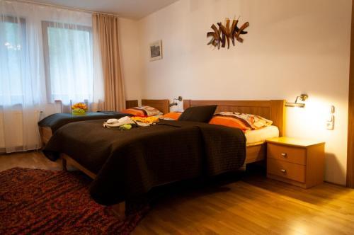 Izba v ubytovaní Penzion pod Brezinou