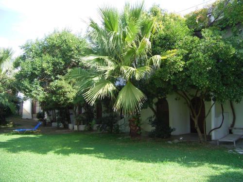 Κήπος έξω από το Damnoni Paradise