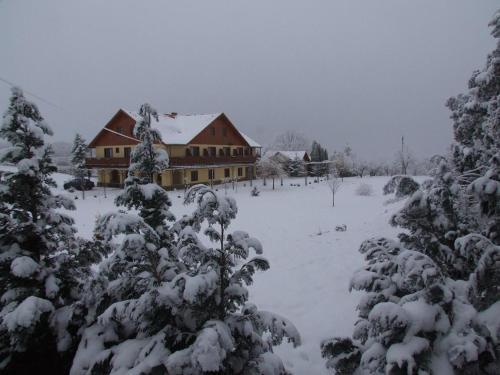 Dedesi Vendégház Zalalövő during the winter