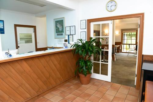 The lobby or reception area at Bandicoot Motor Inn Hamilton