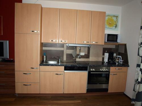 Kuchyň nebo kuchyňský kout v ubytování Appartement-Robin