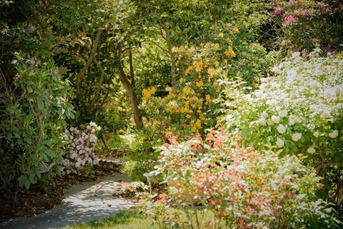 A garden outside The White House