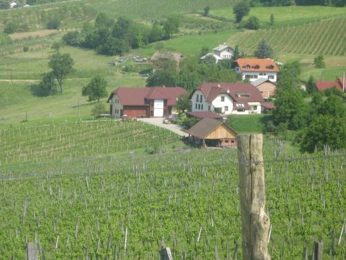 A bird's-eye view of Tourist Farm Joannes