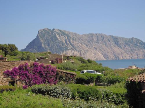 Paesaggio naturale nelle vicinanze della casa vacanze