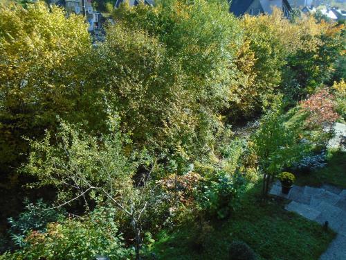 Ein Garten an der Unterkunft Apartment Nieder