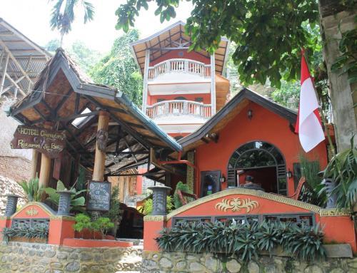 The facade or entrance of Hotel Orangutan