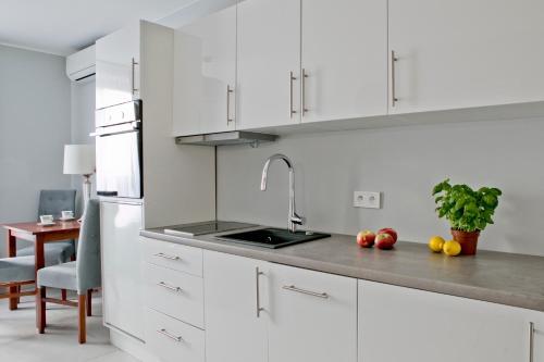 Kuchnia lub aneks kuchenny w obiekcie Elegant City Center Apartment 7B