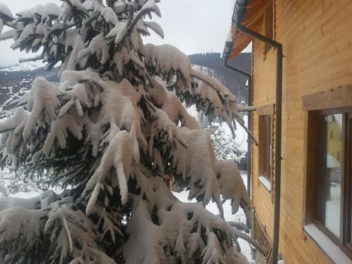 Guest house Zatishniy dvir during the winter