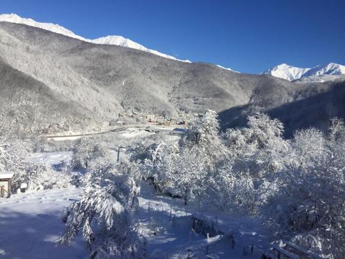 Гостевой дом «Каштан» зимой