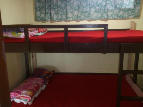 A bunk bed or bunk beds in a room at Zeb's Transient House