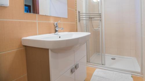 Koupelna v ubytování Trnovec Apartman