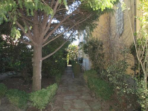 A garden outside Quinta do Prado
