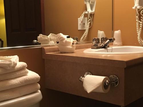 Salle de bains dans l'établissement Motel Cofotel