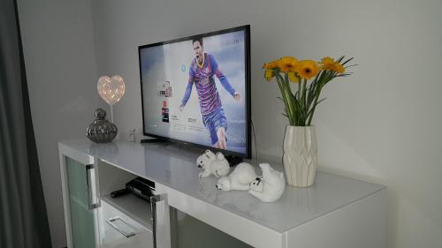 Telewizja i/lub zestaw kina domowego w obiekcie Apartament Love