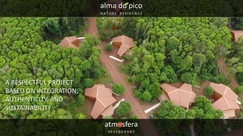 A bird's-eye view of Alma do Pico
