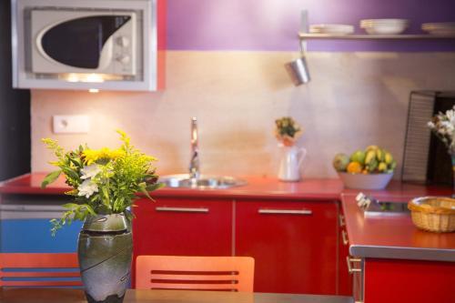 Una cocina o zona de cocina en Apartamentos La Iguana