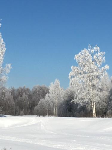 Загородный клуб Прибрежный зимой
