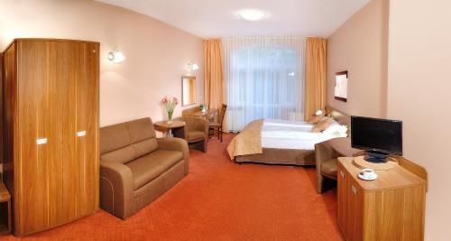 Телевизор и/или развлекательный центр в Paria Hotel