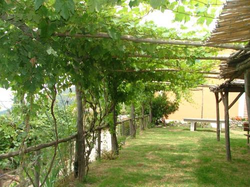 Giardino di Agriturismo La Ginestra