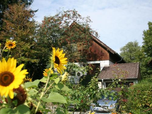 Cozy Apartment in Moos near Lake Constance