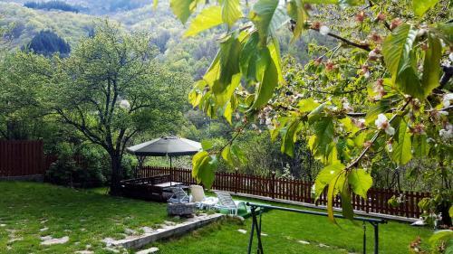 Градина пред Кирилова къща