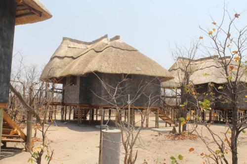 Dzibanana Lodge & Camping