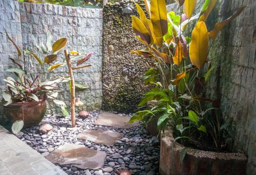 A garden outside Taman Rahasia Tropical Sanctuary and Spa