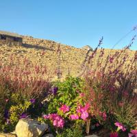 Succah in the Desert, hotel in Mitzpe Ramon