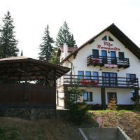 Vila Romanita, hotel din Păltiniş