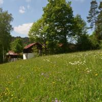Ferienwohnung Wildgatter, Hotel in Grafenwiesen