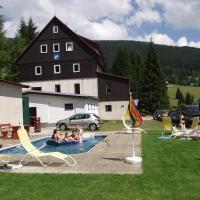 Hotel Flora, отель в городе Витковице
