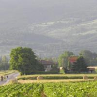 Agriturismo Poderi Minori, hotel a Bibbiena