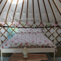 Mill Haven Place Glamping-yurt 1
