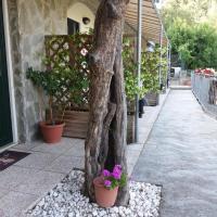 Affittacamere arabafenice, hotell i Vezzano Ligure