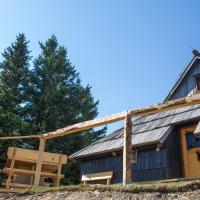 Koča Bistra - Velika planina, hotel in Stahovica