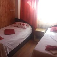Pensiunea Nicol Tulcea, khách sạn ở Tulcea