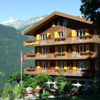 Hotel Bellevue-Wengen - Best view in town!