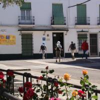 CASA PERIN - HOSTAL RURAL, hotel in Villafranca de los Barros