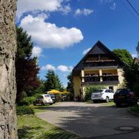 Hotel Sonne, Hotel in Seiffen/Erzgeb.