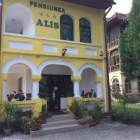 Pensiunea Alis, hotel in Călimăneşti